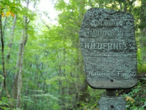 Blood Mountain Wilderness sign on the AT